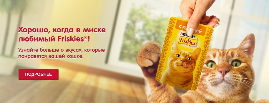 https://friskies.ru/sites/friskies.ru/files/Friskies_banner_4